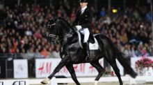 Equitation - Dressage - Dressage: Glock's Toto Jr, digne successeur du célèbre