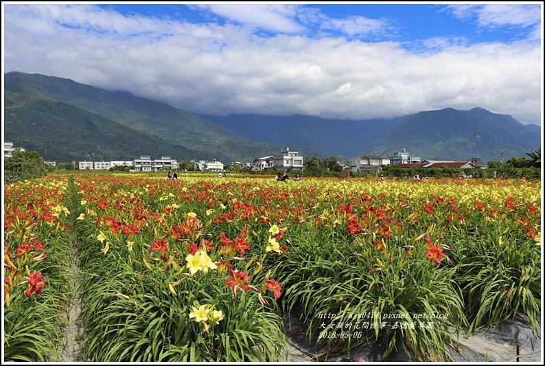 嘉德萱草園-2018-05-25.jpg