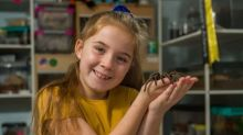 Eight-year-old shares her bedroom with more than 50 spiders