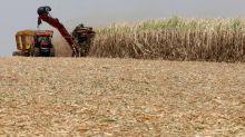 Brasil deve estender por 3 meses cota de etanol isenta de taxa, dizem fontes