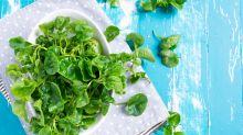 Wissenschaftlich abgesegnet: Das ist das gesündeste Gemüse der Welt