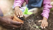 These Citites Are the Best For Gardening, a Study Reveals