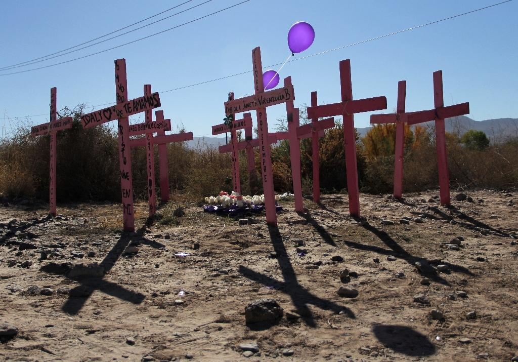 In 2017, a total of 25,339 people were killed in Mexico, the highest number since monitoring began a decade earlier