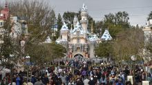 Disneyland construction worker dies after 'tragic accident'
