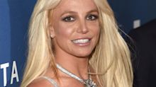 "Britney Spears' mental state described as ""comatose"" in court"