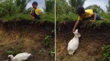 Junge verliert Schuh und freundlichste Ente der Welt bringt ihn zurück