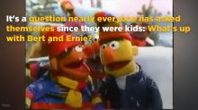 VOTE: Do you think 'Sesame Street' missed an opportunity with Bert and Ernie?