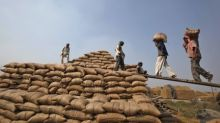 India soybean imports at record as domestic supply tightens: sources