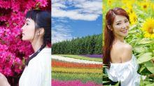 7月日本必去:5大花海打卡拍照的穿搭推薦