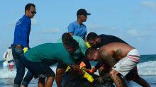 Você pode ajudar a retirar o óleo que devasta o litoral do Nordeste