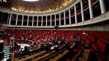 L'Assemblée valide le retour des néonicotinoïdes, record de contestataires chez LREM