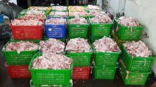 全港唯一豬油廠停運 每日60噸豬脂料棄堆填區
