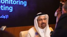 Saudi, UAE oil ministers voice 'concerns' over price swings