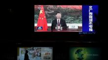 The politics behind Xi's big green promise for China