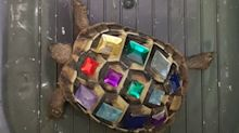 Polizei findet Schildkröte mit Schmucksteinen