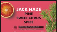 Supreme Cannabis' High End Brand, 7ACRES, Launches New Cultivar: Jack Haze