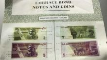 Zimbabwe rolls out 'surrogate' dollars amid unease
