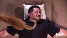 Homem que tem pavor de gatos é exposto aos bichanos