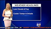 Evelyn Taft's Weather Forecast (June 3)
