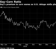 Bad Weather and Trump's Trade War Spawn Dilemma for U.S. Farmers