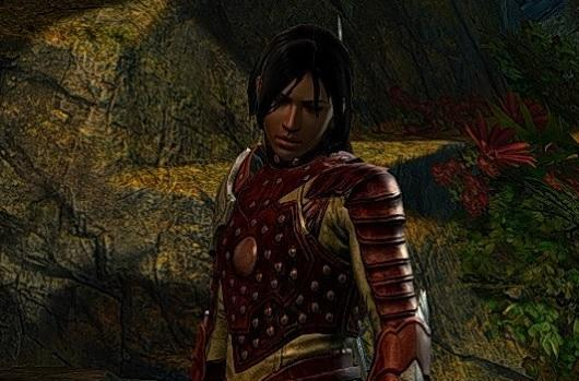 Flameseeker Chronicles: The Guild Wars 2 expansion blues