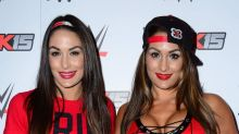 Pregnant Twins Nikki and Brie Bella to Be Inducted Into WWE Hall of Fame
