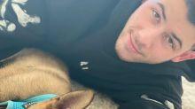 Meet Gino! Priyanka Chopra Surprises Husband Nick Jonas with German Shepherd Puppy as He Wakes Up
