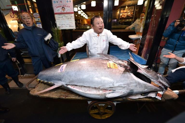 First tuna auction of new era and new year held