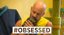 'I honestly prefer cats over humans': How one man adopted 26 cats