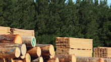 Have Insiders Been Buying West Fraser Timber Co. Ltd. (TSE:WFT) Shares?
