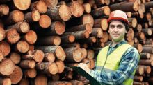 How to Invest in Lumber
