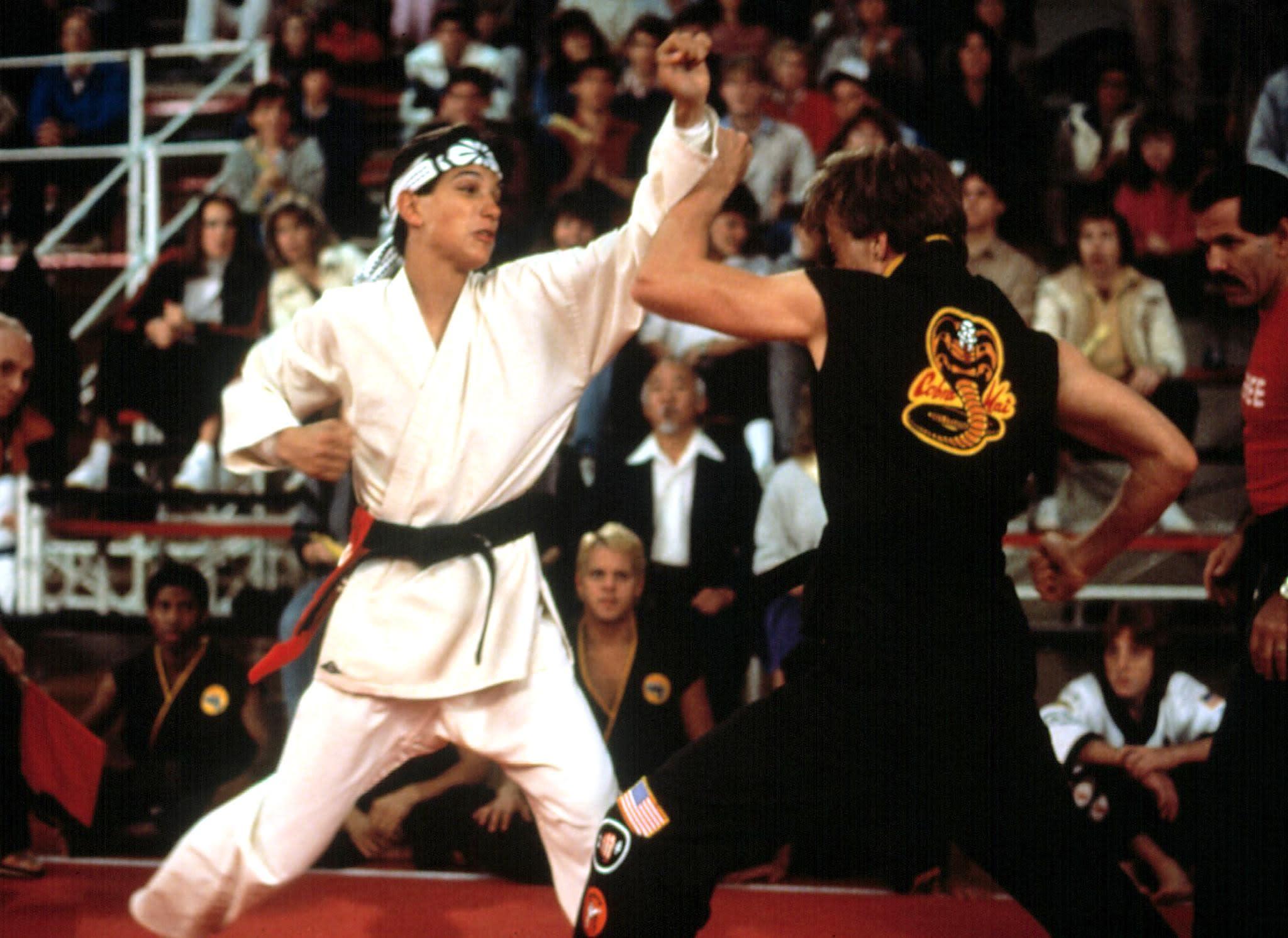 Karate Kid Eye Of The Tiger Full Movie