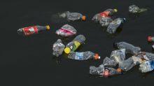 Alter Plastikflaschen-Fund verdeutlicht großes Problem unserer Zeit