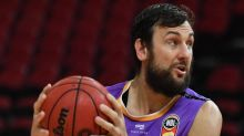 NBL's Kings happy to keep Bogut either way