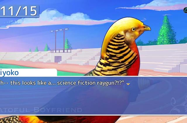 Your favorite pigeon-dating simulator hits PS4, Vita in July