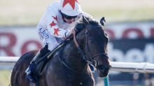 Horse that tested positive for cocaine finally disqualified and Noseda fined