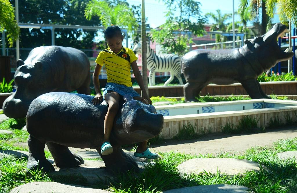 A boy sits on a hippo statue at Jorge Tulio Garces neighbourhood in Doradal, Colombia's Antioquia department, near the Hacienda Napoles theme park, once the private zoo of drug kingpin Pablo Escobar (AFP Photo/Raul Arboleda)