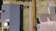 Neighbours go to war over hedge