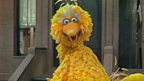 Film Trailer: 'I Am Big Bird: The Caroll Spinney Story'