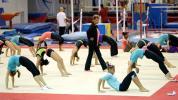 USA Gymnastics cuts Karolyi Ranch ties