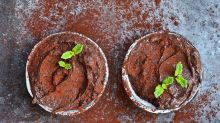 ¿Qué sale si mezclas aguacate y chocolate? Un postre delicioso