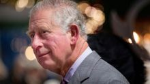 Almost half of British public want Prince Charles to give throne to William upon Queen's death, survey finds