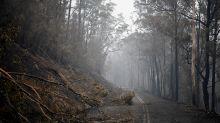 Cost Of Australia Bushfires Mount: 'Very Significant Economic Impact'