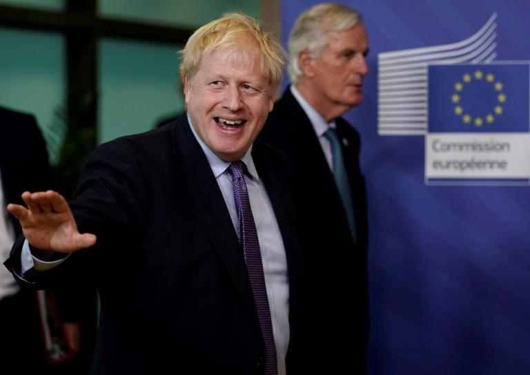 The coronavirus put Johnson in intensive care and Barnier also tested positive (AFP Photo/Kenzo TRIBOUILLARD)