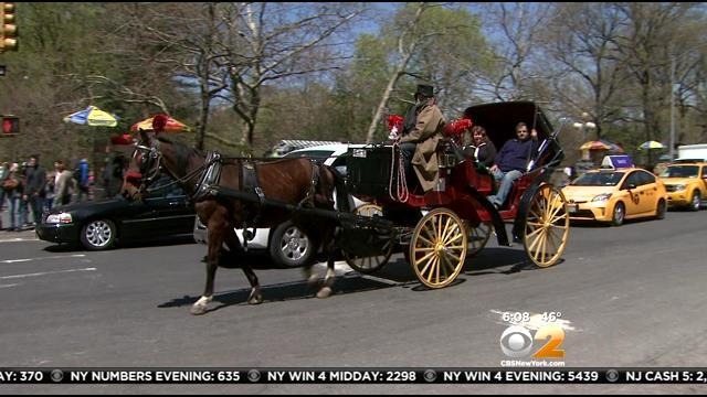 Group Demands NYPD Turn Over Public Records On Horse-Drawn Carriage Incidents