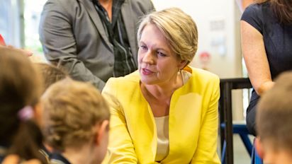 Tanya Plibersek will NOT contest Labor leadership