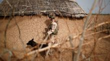 Despite coup, France and allies push on with new Mali task force