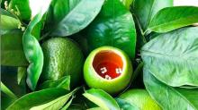 Veganismo: La alta cocina se une a la revolución verde