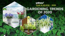 5 micro-trends that defined 2020's gardening craze
