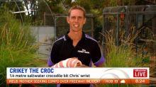 Victoria jockey has a run-in with croc